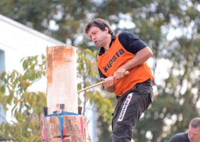 DENGLER Ralf - Epreuve Springboard - Festival 2014